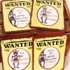western party. western theme. wanted posters. western props