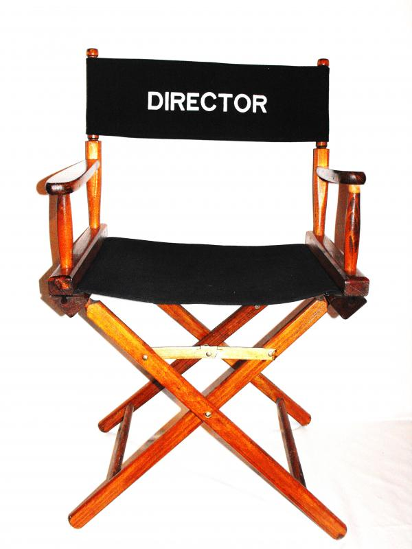 Director S Chair All The Rage Decor